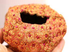 Urchin Pod, Yellow Star